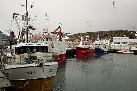 0240-Berlevag-Hafen