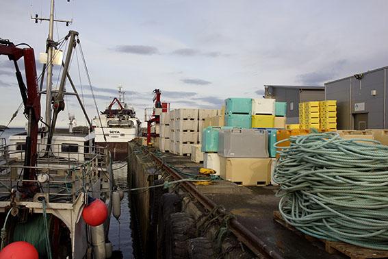 0327-Berlevag-Hafen