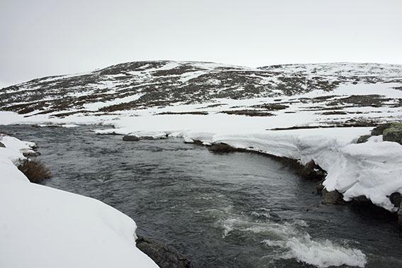 5033--batsfjord-fahrt