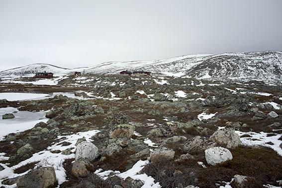 5043-batsfjord-fahrt